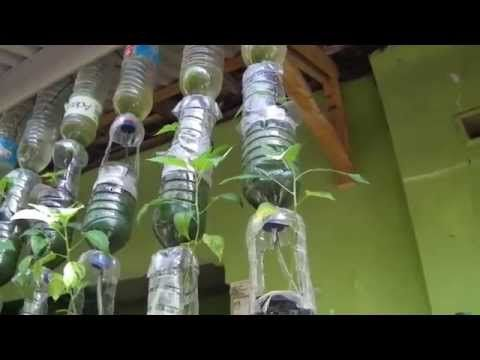 Tutorial Instalasi Hidroponik Botol Gantung Sistem Tetes