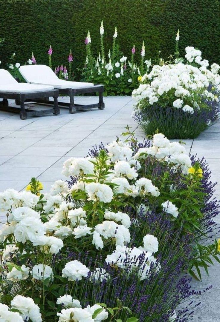 43 Beautiful Garden Design For Backyard Ideas 37 Aacmm Com Evergreen Hedge Beautiful Gardens Backyard Landscaping