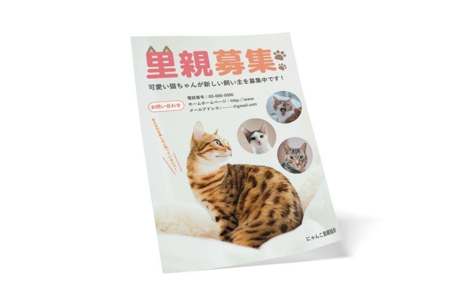 ペットの里親募集の無料チラシデザインテンプレート 猫 パワーポイントの無料チラシ Popテンプレート Asobo Design チラシ デザイン テンプレート 里親 チラシ