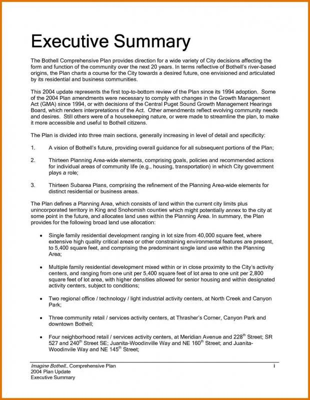 Example Of An Executive Summary Template Executive Summary