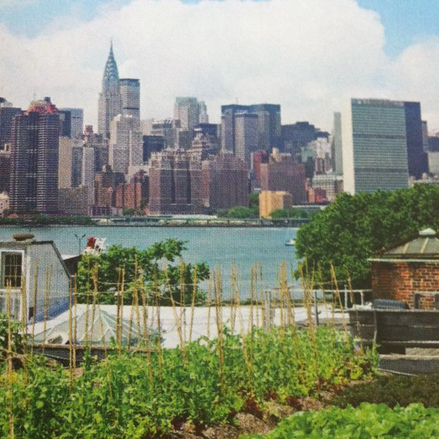eagle street rooftop farmbrooklyn Check out Brigettes review of