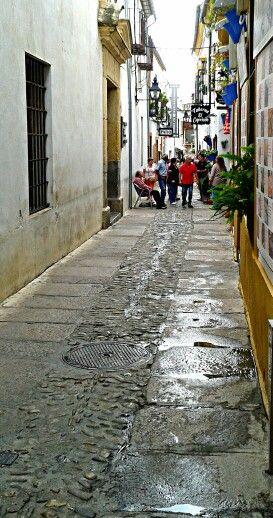 Paseando por la Judería de Córdoba.  M.Carrion