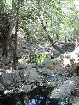 Solstice Canyon Loop Trail. ~ With Cecilia.
