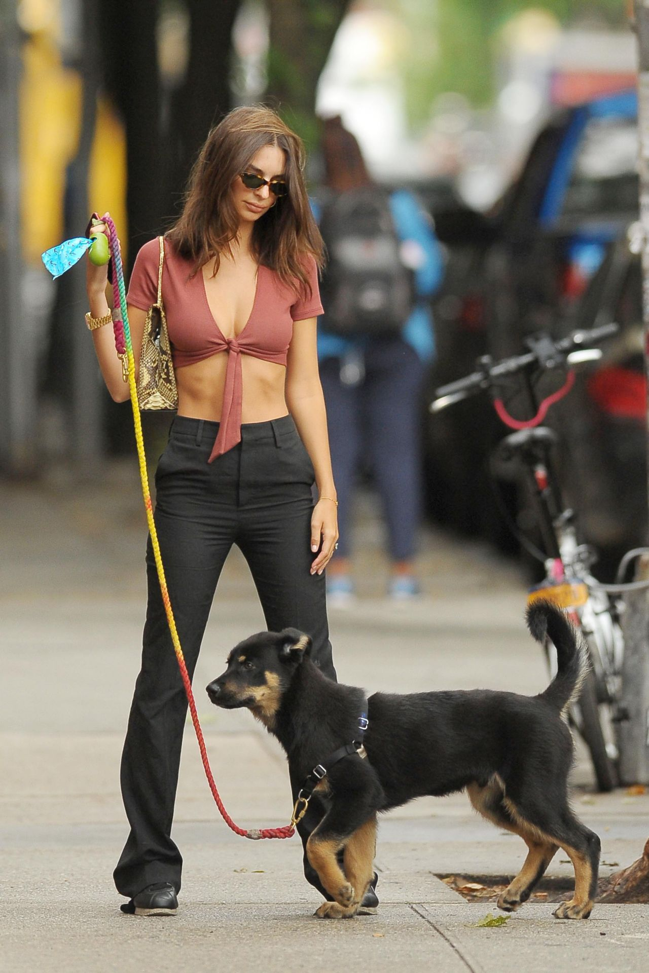 abs hollywoods stroll - HD1280×1920