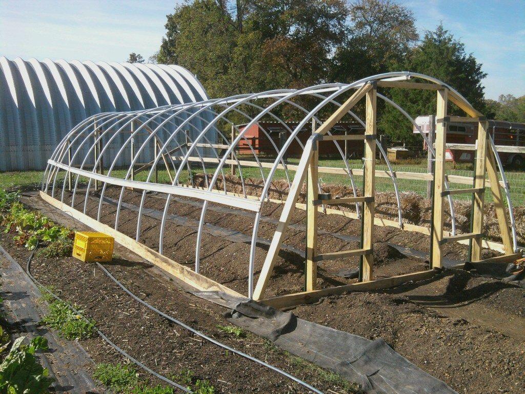 Pin On Homestead Gardening