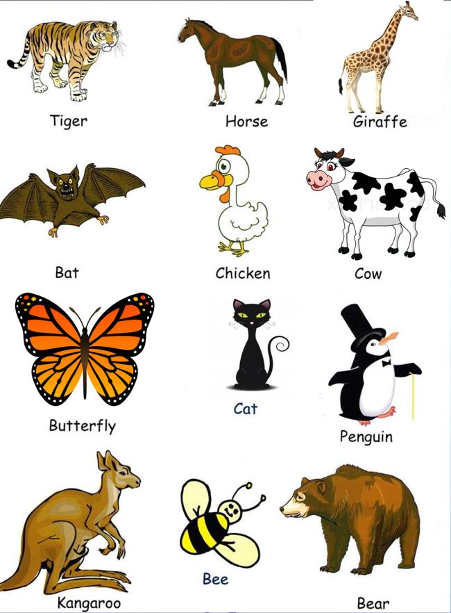 Posts About Ingles On Diloga Animales En Ingles Nombres En Ingles Material Escolar En Ingles