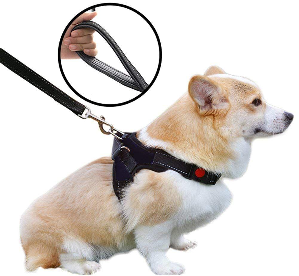 Scheppend Adjustable Pet Harness Leash Set For Small Medium Large