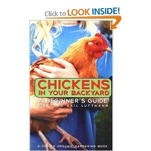 looks good for beginners | Chickens backyard, Pet chickens ...