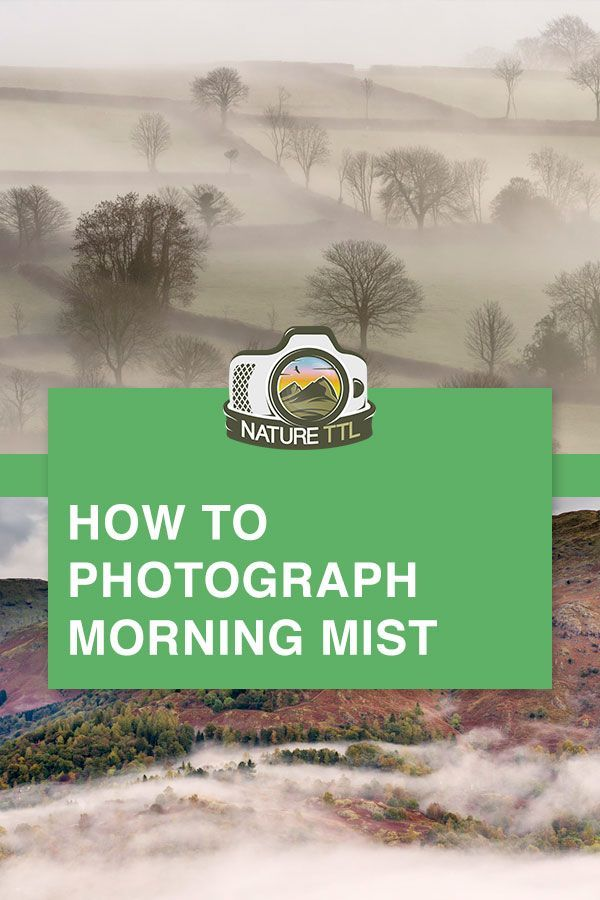 How to Photograph Magical Morning Mist -  Misty mornings make for magical photographs. Ross Hoddinott shares his expert advice on how to phot - #