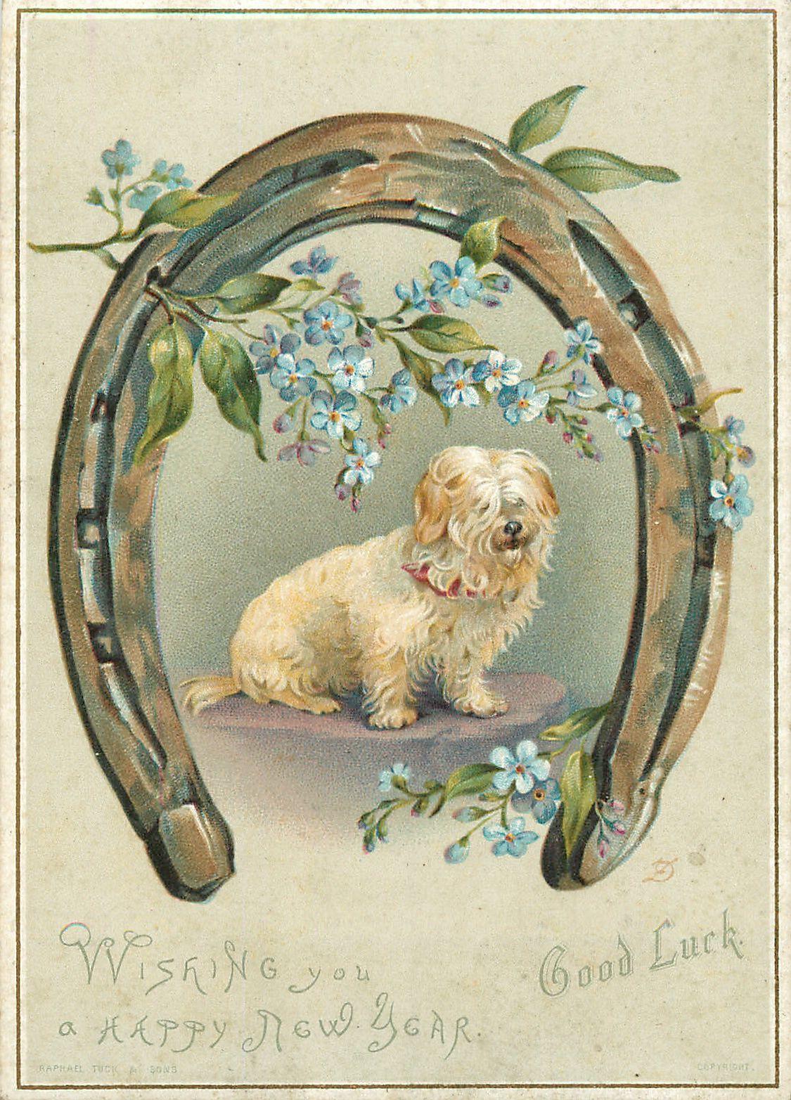 laminas de todo tipo de animales   Pinterest   Tipos de animales, De ...