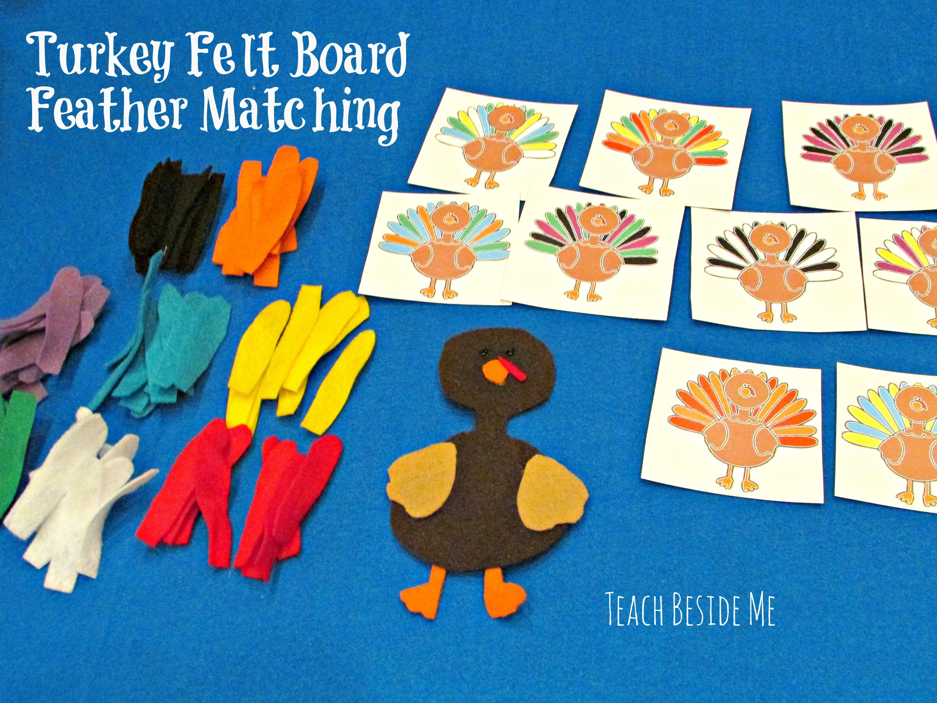 Turkey Felt Board Feather Matching
