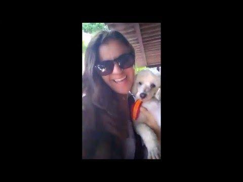 Nesse vídeo a Thaís fala um pouquinho de como é difícil a vida de um protetor!! + no final sempre vale a pena, fazemos tudo pq amamos esses anjinhos!! Se ins...