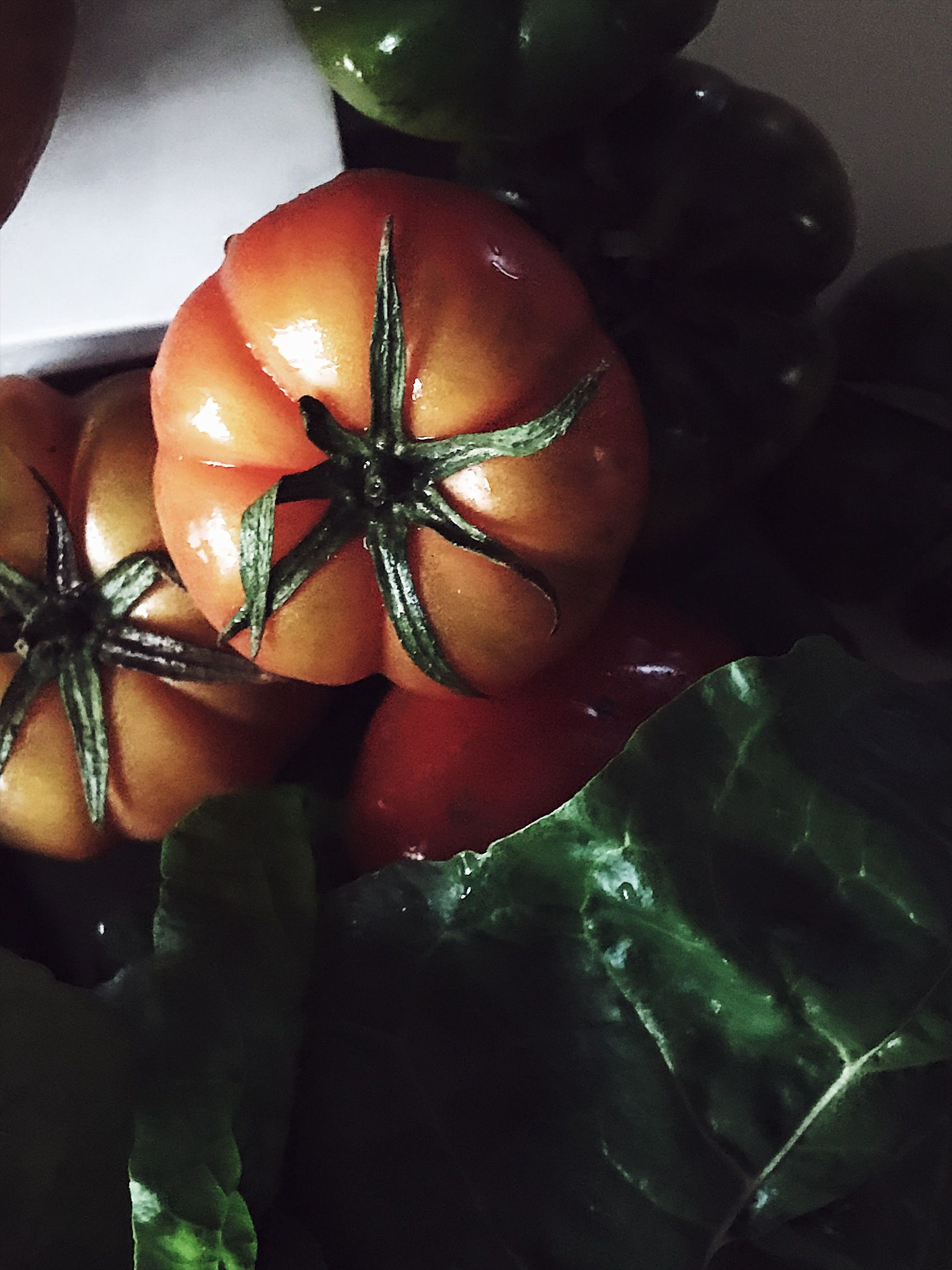 first tomatoes from Southern Italy