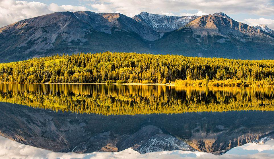 Forest Reflection Pyramid Lake, Jaspar National Park, Canada