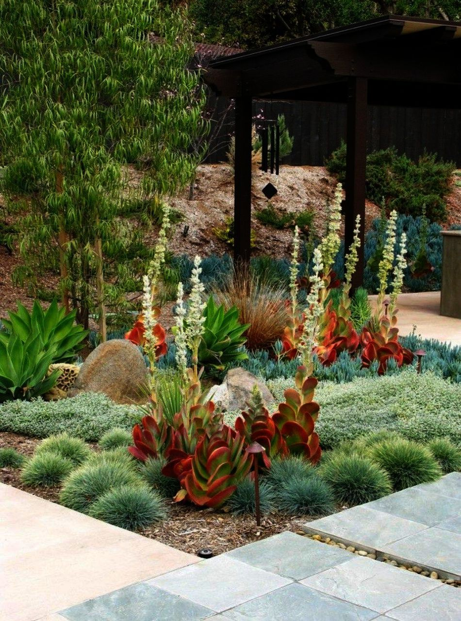 Landscape Design Jobs In South Africa Our Landscape Architecture Design App Nor Landscape Des Succulent Landscape Design Succulent Landscaping Landscape Design