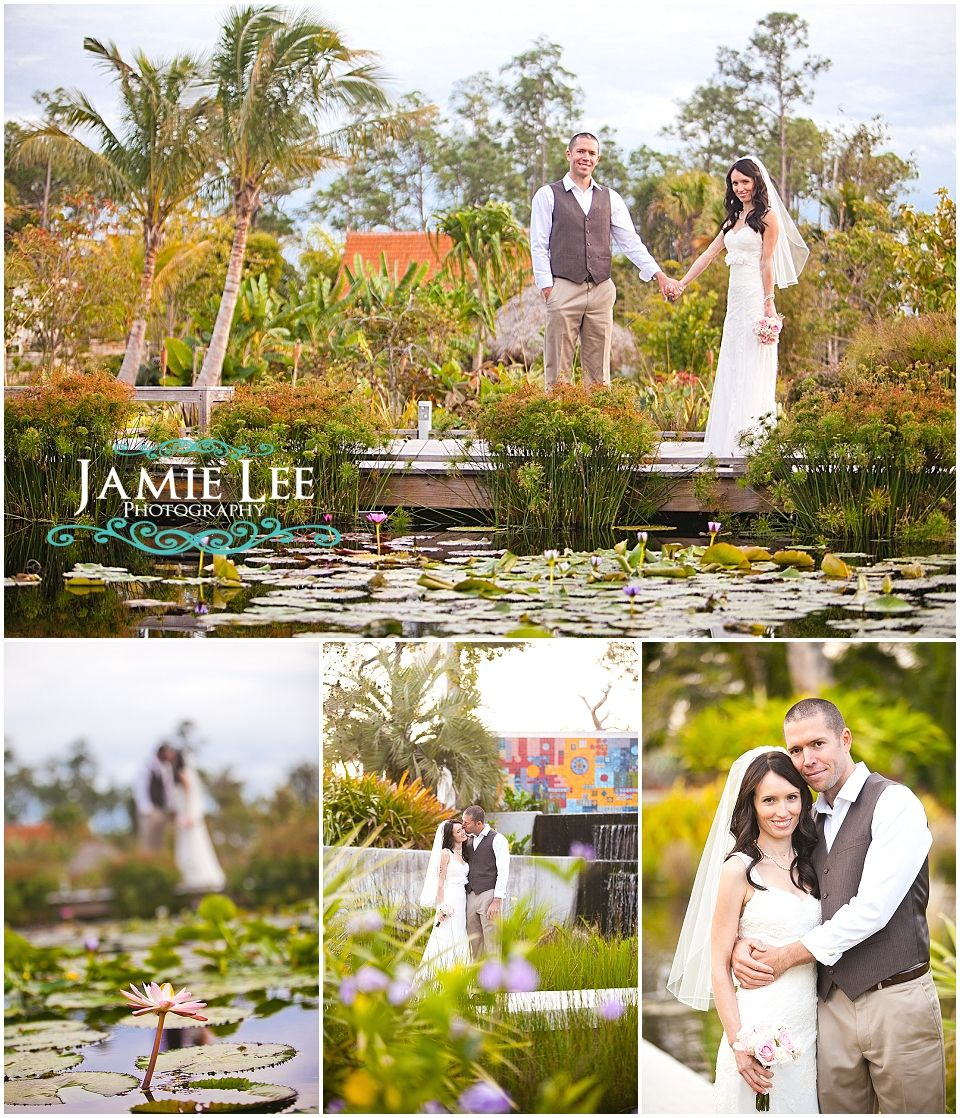 Naples botanical gardens wedding photographer jamie lee - Marie selby botanical gardens coupon ...