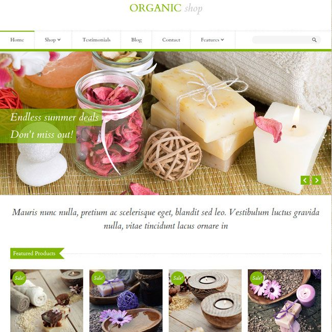 Organic Shop – eCommerce WordPress Theme | Premium WordPress Themes ...