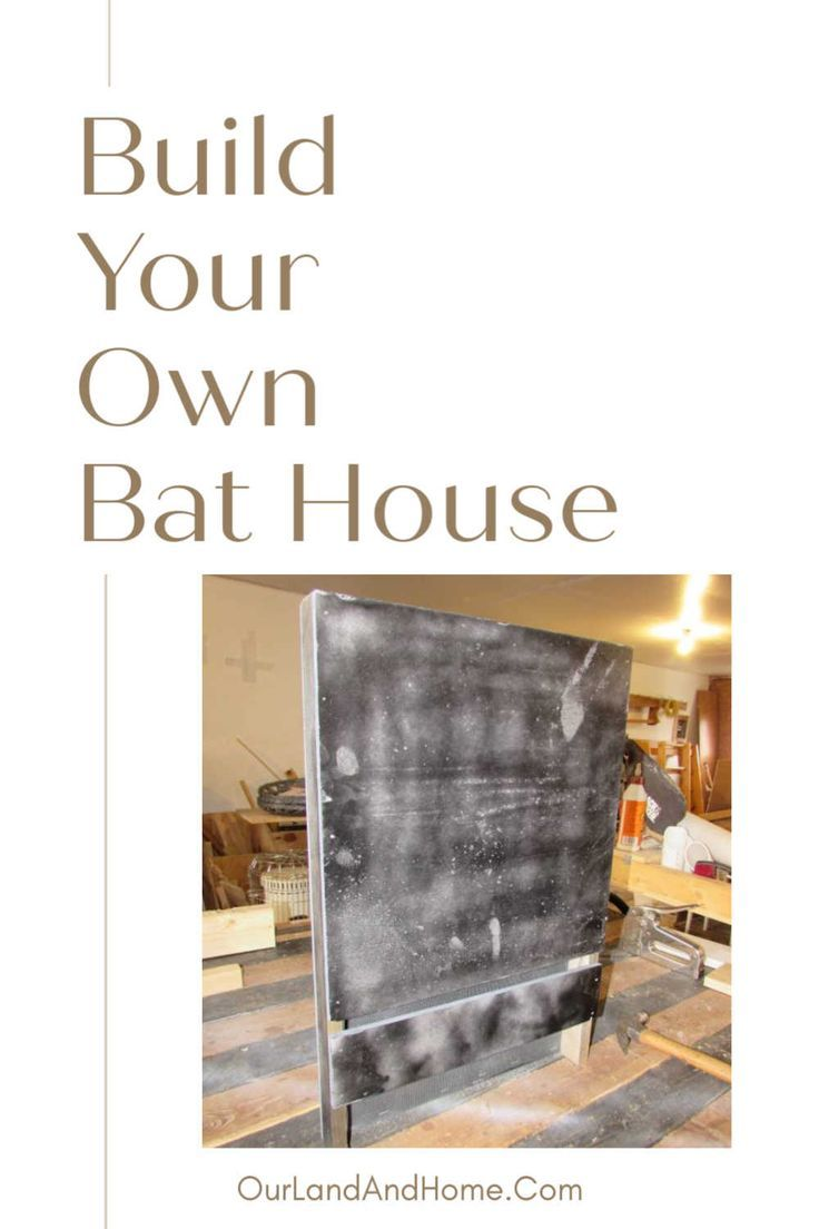 Bat house landscaping for wildlife house landscape