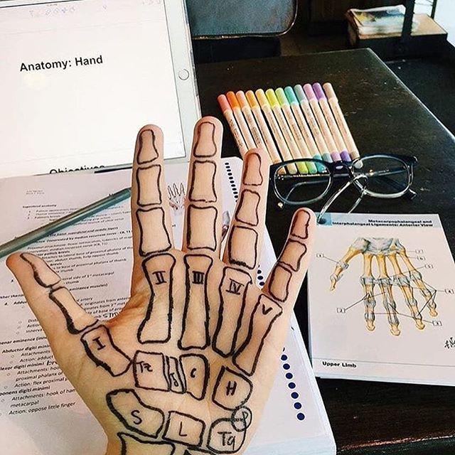"""MAWZ Wien on Instagram: """"Wer hat auch so gelernt? �� #mawzwien #Mawz #österreich #medizinstudium #medat #studium #anatomy #medizin #meduni #medicine #sip #lernen…"""""""