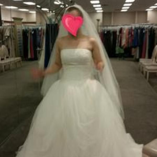 White by Vera Wang Tossed Tulle Wedding Dress - Davids Bridal