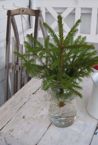 Table top tree