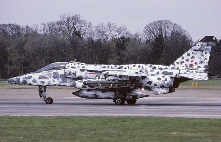 SEPECAT Jaguar   Jaguar   Jaguar, Aviation, Aircraft painting