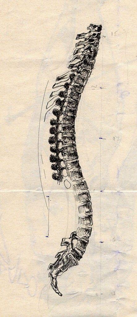 Boceto Anatomía \