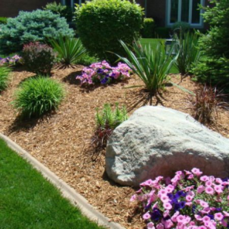 Photos The Many Types Of Landscape Mulch Mulch Landscaping