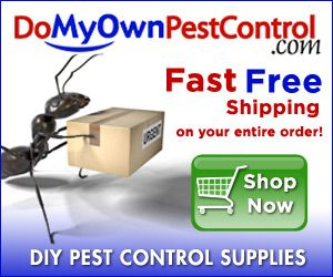 Do it yourself pest control products and supplies cleaning do it yourself pest control products and supplies solutioingenieria Choice Image