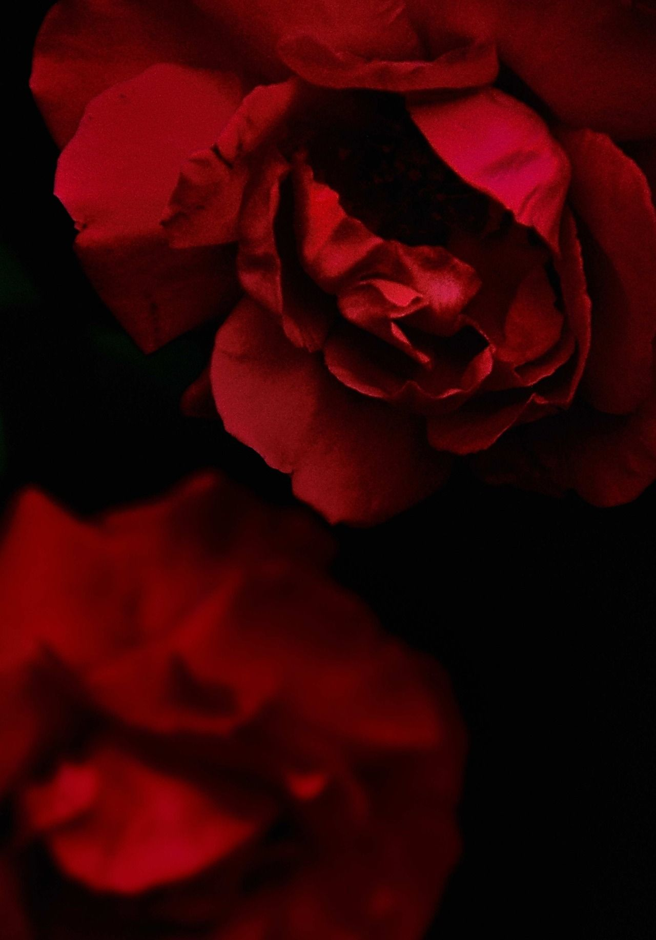 Red And Black Aesthetic Photos
