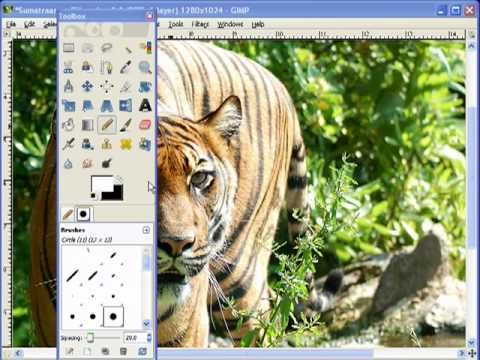 Creating Scroll Saw Portrait Patterns with GIMP - Online Class