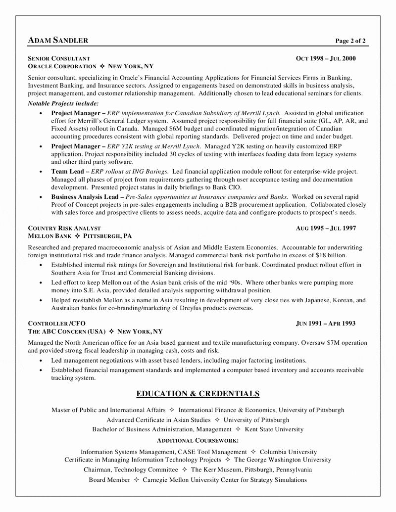 12+ Business systems analyst resume summary Format