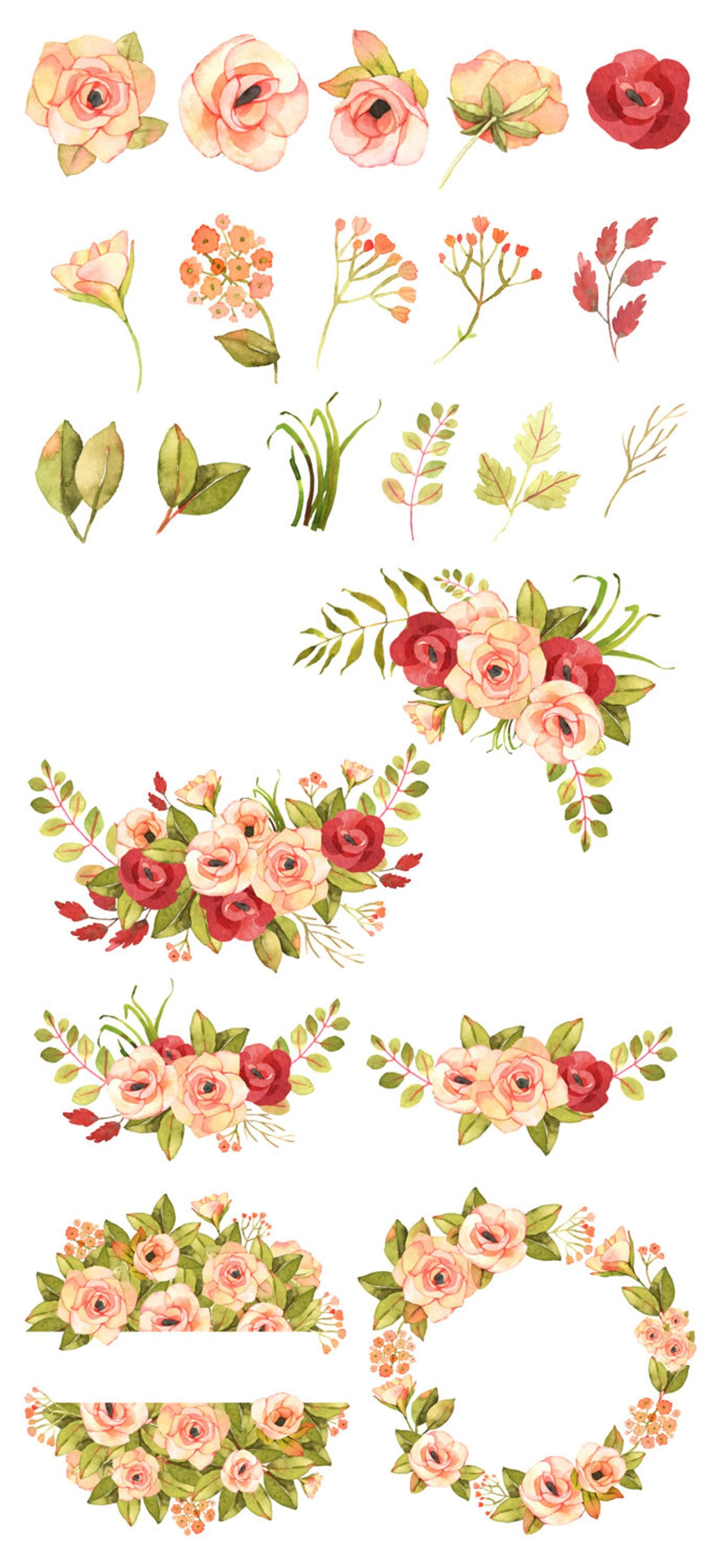 Flower Clipart Floral Clipart Roses Watercolor Clipart Roses