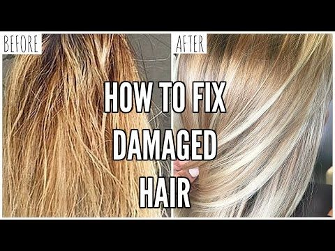 4 How To Fix Extremely Damaged Hair At Home Youtube Damaged