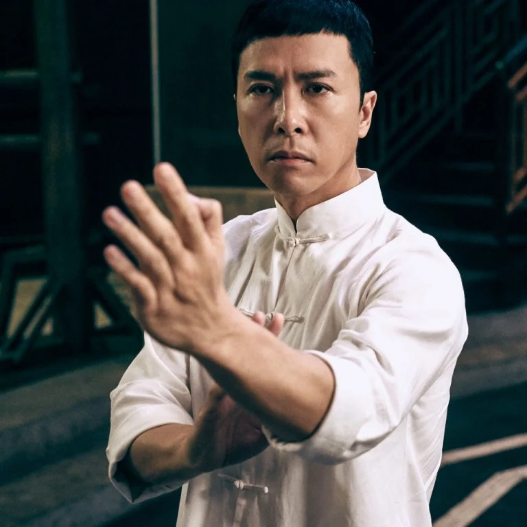 Donnie Yen Net Worth Wiki Bio Earnings Career Movies Martialarts Age Wife Children In 2020 Donnie Yen Kung Fu Movies Ip Man 3