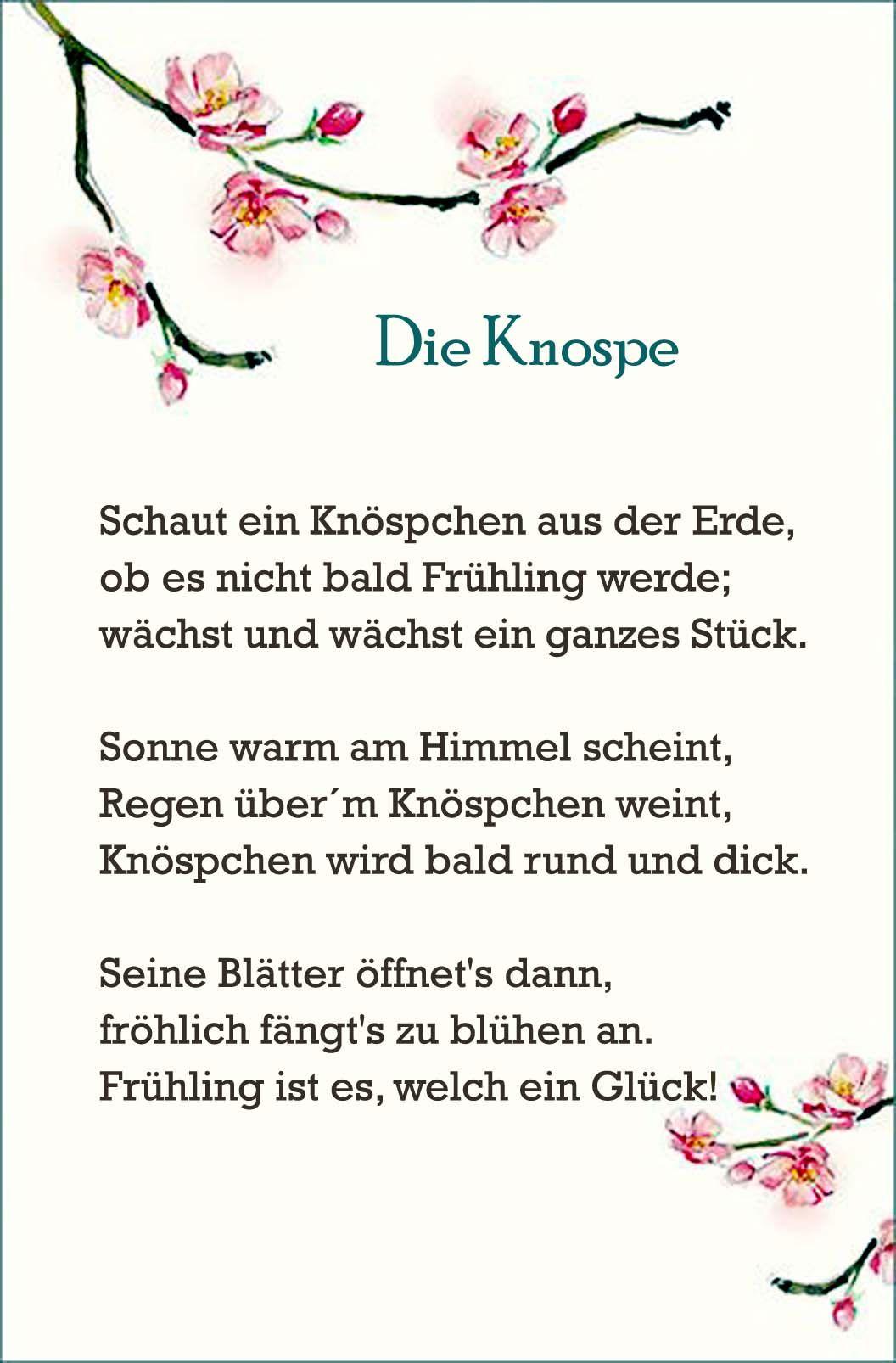 Die Knospe | Gedichte | Pinterest | Kindergarten, Life ...