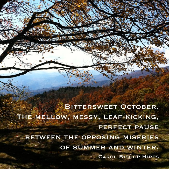 Bittersweet October Quote | Fall Quote | Autumn Leaves | Blue Ridge  Mountains | Photo And Awesome Design