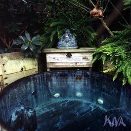 Hot Springs Kiva Retreat Santa Cruz