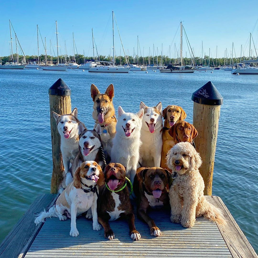 Which boat are we getting on?!