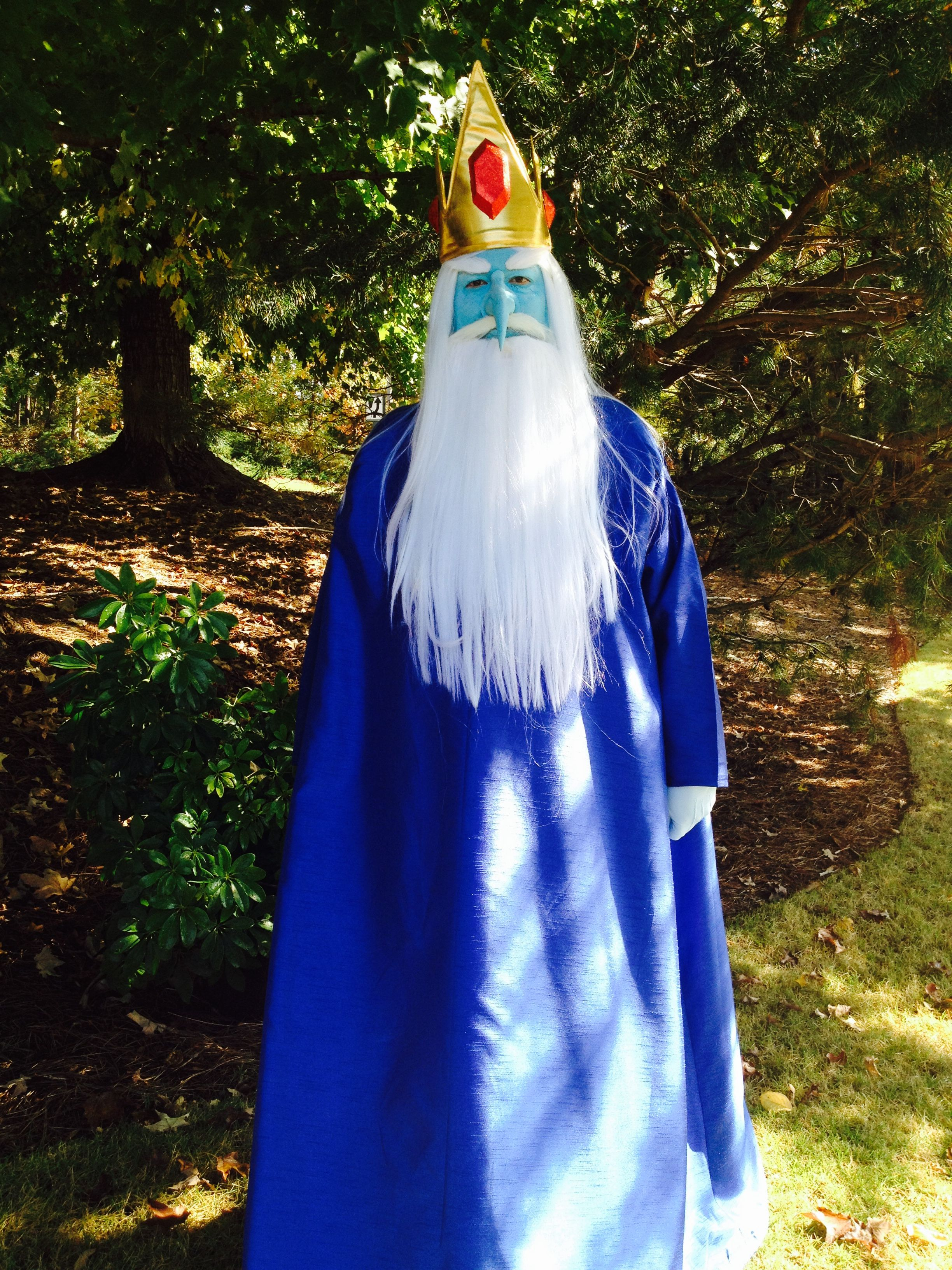Brand New Adventure Time Ice King Child Costume