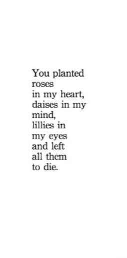 you planted roses in my heart