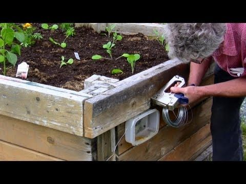 Electric Garden Slug Fence Slugs Will Ruin A Vegetable Garden Pretty Fast Unless Some Serious Means Of Takin Slugs Slug Control Organic Gardening Pest Control
