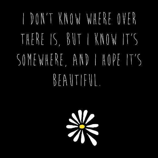 looking for alaska quotes - Google Search | Looking for Alaska ...