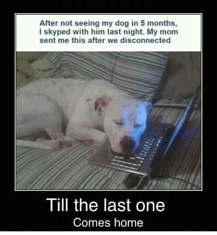 Don't know if this is a true story but it is way too sweet!!!