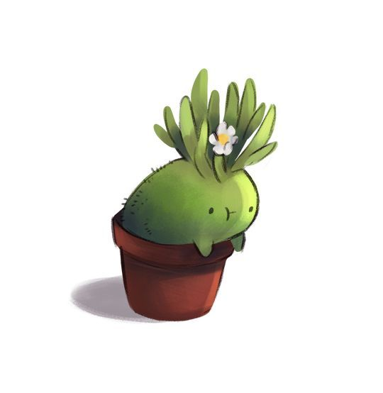Time Blur Plant Friend Think This Is Come Kind Of Cactus