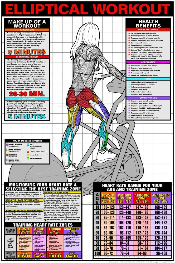 Elliptical workout major muscles heart rate target zone elliptical workout major muscles heart rate target zone nvjuhfo Gallery