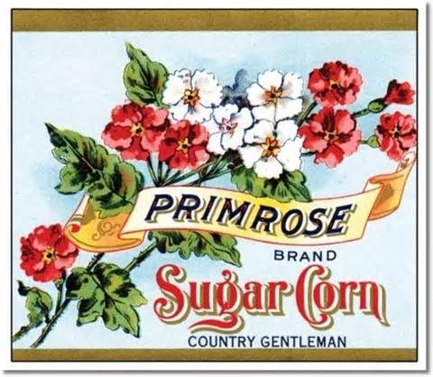 vintage produce labels - Yahoo Image Search Results