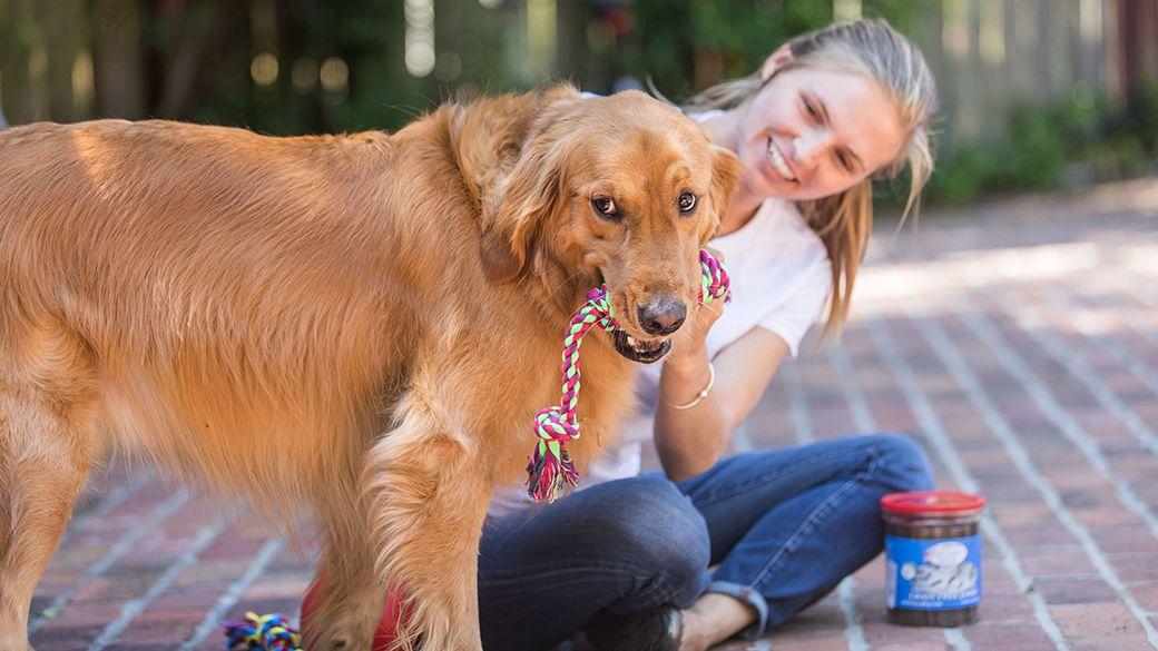 8 gifts for dog owners gifts for dog owners dog owners