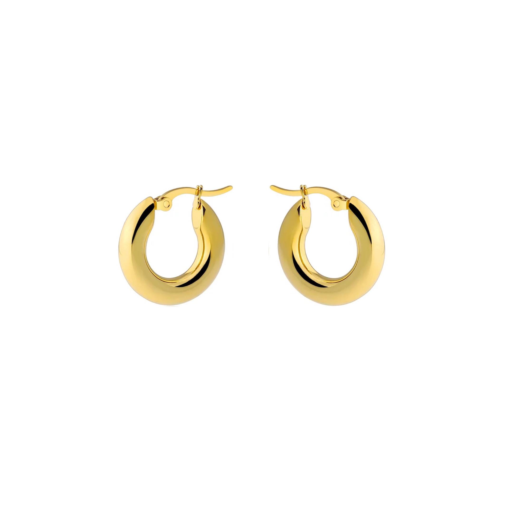 Small Thick Hoops Earrings 20mm Hoop Earrings Earrings Small Gold Hoops