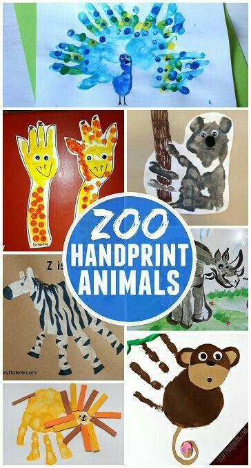 activite manuelle autour du zoo